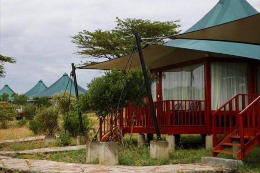 AA Mara tented camp