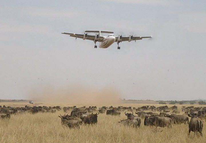 Kenya air safari package Masai Mara